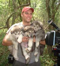 Hudson's Malamutes - Josh Shreve (Director of Photography) with Hudson's Puppies at the movie Sparkle and Tooter